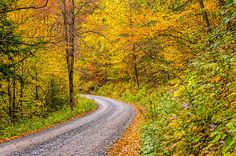 Pennsylvania Back Road 2.  Pennsylvania is loaded with vibrant autumn country roads. A great place to get lost!