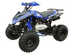 Shop for ATV040 150cc ATV - Lowest Price, Great Customer Support, Free PDI, Safe and Trusted.