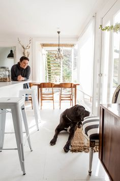 Spotted! Man, Griswold's got it made! A gorgeous home (full of vintage Danish modern goodies), an awesome name, and a human who loves him to bits: what more could a dog want?