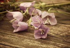 Bluebells on wooden table by Creating_Is_Happiness on @creativemarket