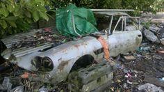 Ferrari 330 Coupe shell barn find