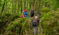 Bilder und Bericht der 24h Wanderung in der Fränkischen Schweiz / Plech zur Columbia Hike and Run