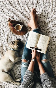 winter coziness | home style with coffee fav pet reading interesting book is the best time of your life