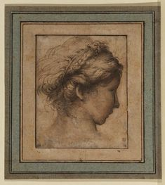 Parmigianino - Head of the Girl Pen and ink (dark brown), watercolour (grey) on paper