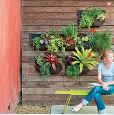 Wall planters!