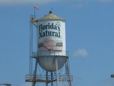 Florida's Natural Water Tower - Lake Wales, FL - Water Towers on ...