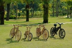 a family of bikes