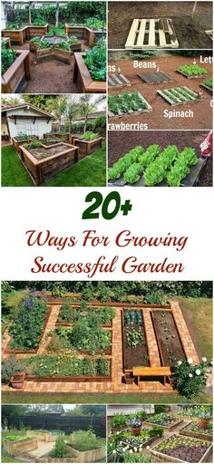 Even if you only have a small space, it isn't an obstacle anymore in your effort to vegetable garden.