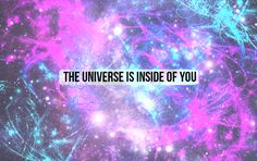 The Universe Is Insi