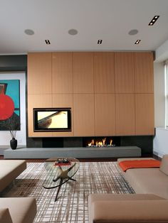 Living Room Fire Place With Tv Design, Pictures, Remodel, Decor and Ideas - page 10