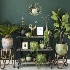 Home Decoration Do It Yourself Room With Plants, House Plants Decor, Plant Decor, Interior Design Living Room, Living Room Decor, Bedroom Decor, Interior Colors, Interior Livingroom, Interior Paint