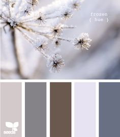 Snow tones - possibly for master bedroom.