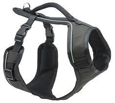 PetSafe EasySport Harness, Large, Black PetSafe