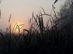 Sunrise in Bellingham Washington