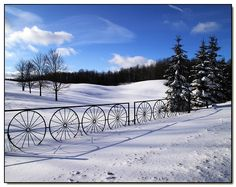 Love the wagon wheel gate/fence Fence Gate, Horse Fence, Fencing, Old Wagons, Garden Deco, Buggy, Gate Design, Stair Railing, Old Farm