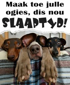 Good Night Sleep Tight, Afrikaanse Quotes, Good Night Greetings, Goeie Nag, Good Night Quotes, Strong Quotes, Toe, Finger, Powerful Quotes