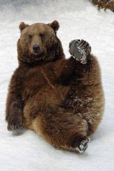 Does a bear $h!t.in the woods..YES WE DO I JUST STEPPED IN IT.