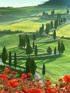 Monticello, Tuscany, Italy...