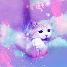 oh_my_dior_cosmic_cat