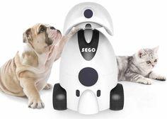 Sego Robotic Pet Companion