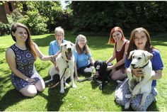It's a dog's life: puppies help stressed-out Cambridge students cope with exams