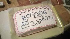 #homemade #cake #kiwi #simonscat