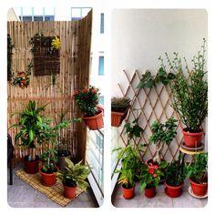 beautiful balcony gardenbalcony decor ideas pinterest balconies balcony gardening and gardens