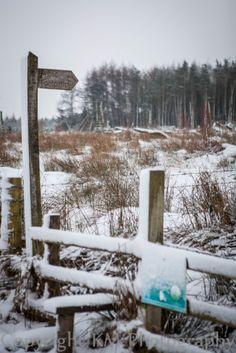 Snow at Turton Res 2013 Photography by Karen Mathison,