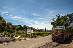 The Napa Valley Wine Train stopping in front of Moore Moore Grgich Hills Estate for their winery trip. Best Wineries In Napa, Napa Vineyards, Napa Valley Wineries, Yountville Wineries, Places Around The World, Around The Worlds, Napa Restaurants, Napa Valley Wine Train, Napa Ca