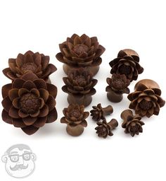 Carved Camellia Flower Wood Plugs - New! Sizes / Gauges - 1 & Inch) Pair (ordering a quantity of 1 gets you a pair)Select size from the drop-down menuMaterial: Saba woodDouble FlaresHand craftedSold in PairsPick from 1 Inch, 1 & 1 & Ear Jewelry, Body Jewelry, Jewelery, Jewelry Watches, Jewelry Box, Unique Jewelry, Wooden Plugs, Tunnels And Plugs, Ear Tunnels