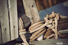 knots.