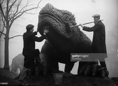 Exhibition staff give a prehistoric model its annual clean in the grounds of Crystal Palace in London. Get premium, high resolution news photos at Getty Images Crystal Palace, Hyde Park, Reptile House, Extinct Animals, Old London, South London, Le Palais, Croydon, Exhibition