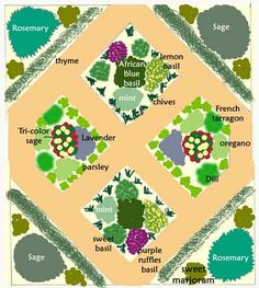 Herb Garden Layout Ideas apothecarygarden1 garden design layout Sizes Of Culinary Herb Plants Herb Garden Designs