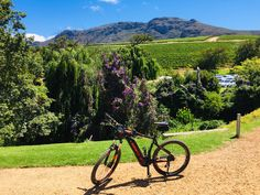 Our Constantia Ebike Tour will make you discover the oldest urban wine-making region of Cape Town behind Table Mountain with incredible landscape and views and historical wine farms Giant Electric Bike, Beautiful Roads, Seaside Village, Table Mountain, One With Nature, Island Tour, Nature Reserve, Cape Town, Nice View