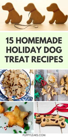 Homemade Dog Food 15 Homemade Holiday Dog Treat Recipes - Looking for an easy gift to make for your dog this holiday season? Make them one of these homemade holiday dog treat recipes. Holiday Dog Treat Recipe, Dog Treat Recipes, Dog Food Recipes, Doggy Treats Recipe, Food Dog, Puppy Food, Puppy Treats, Diy Dog Treats, Homemade Dog Cookies