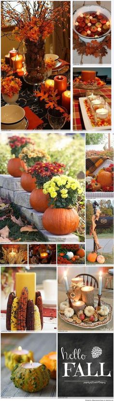 Discover thousands of images about Fall Decorating Ideas that you can use for all your Thanksgiving festivities and family parties. These are beautiful fall tablescapes. Harvest Party, Fall Harvest, Harvest Time, Thanksgiving Decorations, Seasonal Decor, Thanksgiving Ideas, Fall Crafts, Holiday Crafts, Holiday Decor