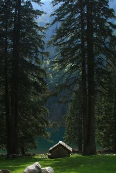 Cabin & Huge trees at Lago di Cama (Cama lake), Graubunden, Switzerland Cabin In The Woods, Little Cabin, Photos Voyages, Cabins And Cottages, Log Cabins, Belle Photo, The Great Outdoors, Nature Photography, Beautiful Places