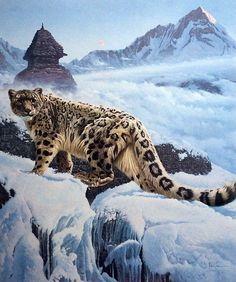 Snow leopard || World Of Leopard #earth #world #nature #wilderness #big #animals #snow #wildcats #amur #leopard #wildlife #africa #rocky #landscape #bush #photography #asia #cats #black_&_white