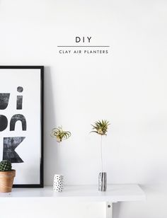 Give A Plant A Home