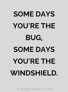 Quotes Some days you're the bug, Some days you're the windshield.