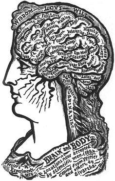 California Brain Injury Lawyer | www.RobertReevesLaw.com/injuries/brain-injury.html | Brain
