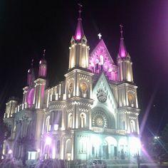 "76 curtidas, 6 comentários - ARCHLIFE | Heloise Travain (@archlifeoficial) no Instagram: ""Igreja Matriz de Itajaí, sempre linda  #arquitetura #archlifeblog #architecture #itajai #viversc…"""