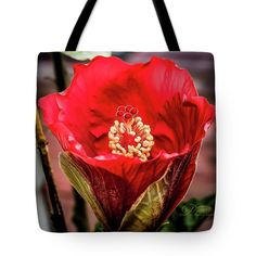 Tote Bag featuring the photograph Ginnie's Young Hibiscus by Michael Johnk