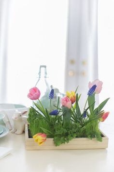 This simple live grass centerpiece will make a beautiful statement for Easter. Decorate with tulips, hyacinths or Easter eggs for a fun display.