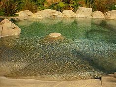 "I ""need"" a pool with a beach slope entry.  Really.  And this one even has a ""sitting rock."""