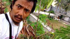 Dokumentasi Riset Sarang Burung-Cabean Jawa (02)