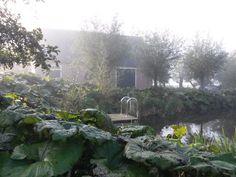 Groenpartners heeft in deze tuin een natuurlijk zwemwater gerealiseerd, door gebruik te maken van het aanwezige water. Landscape, Inspireren, Plants, Water, Pictures, Formula E, Sycamore Trees, Gripe Water, Scenery
