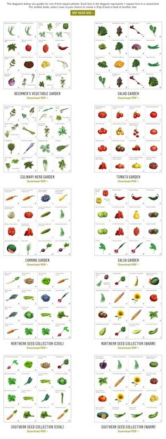 Beginner's vegetable garden, salad garden, herb garden, tomato garden, canning garden, salsa garden, northern and southern seed collections - downloadable pdf