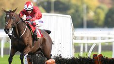 Hard work in mud for The New One - Horse Racing - Erupt Sports