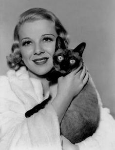 Actress Glenda Farrell and Siamese cat